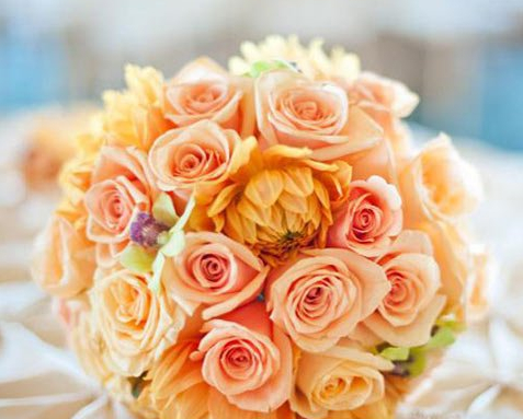 light orange holding  flower for bride