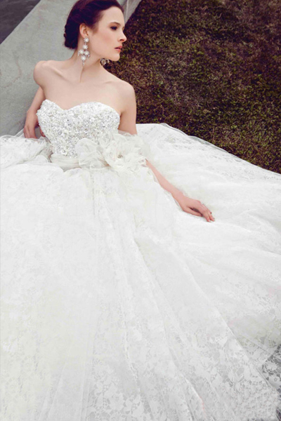 Gorgeous crystal strapless wedding dress